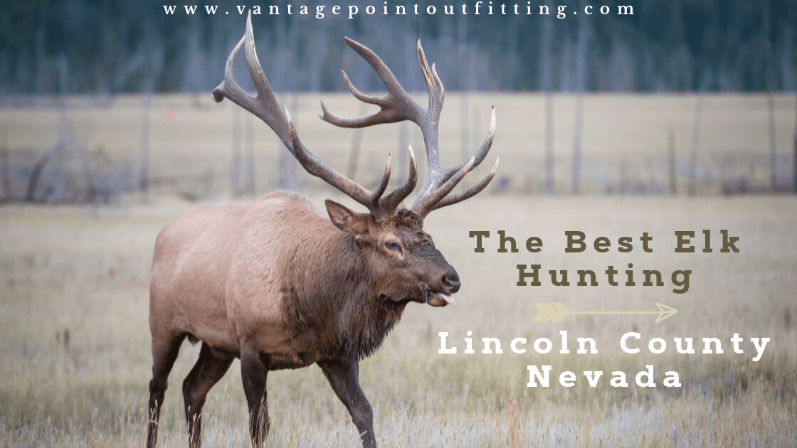 The Best Elk Hunting Is In Lincoln County Nevada Vantage Point Outfitting